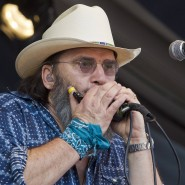 Der Country-Musiker Steve Earle beim New Orleans Jazz Festival