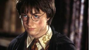 Wenn's mir nur gruselte: Harry Potter II im Kino