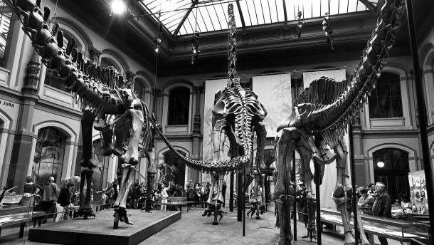 Wie kolonialistisch sind Naturkundemuseen?