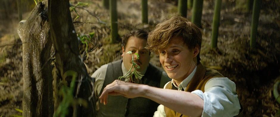 Das Standardwerk, das Scamander über die phantastischen Tierwesen verfasst, wird Harry Potter später in Hogwarts in die Hand gedrückt bekommen.