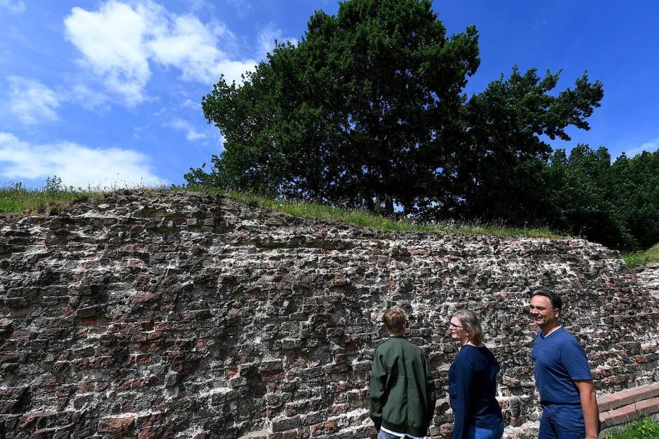 Besucher stehen an der Waldemarmauer des Grenzwalls Danewerk.
