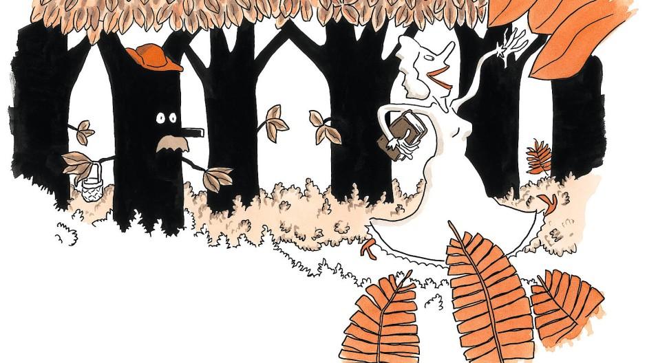 Das war's mit dem Blaubeerensammeln: Die Hexe hat Dulcineas Vater erwischt.