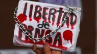"""Auch nach einem Jahr waren die Umstände seine Todes noch ungeklärt: Schild mit der Aufschrift """"Pressefreiheit"""" auf einer Demonstration für den Fotojournalisten Ruben Esinosa in Mexiko-Stadt Ende Juli 2016."""