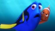 Ahnenforschung unter Wasser