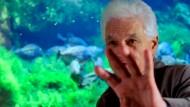 Fasziniert von der Ungeduld der Fische: Jacques Derrida