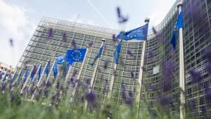 Die EU muss den Fluch hoher Schulden überwinden