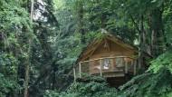 Im Baumhaus auf Stelzen thront man über den Dingen und den Wasserfällen der Franche-Comté