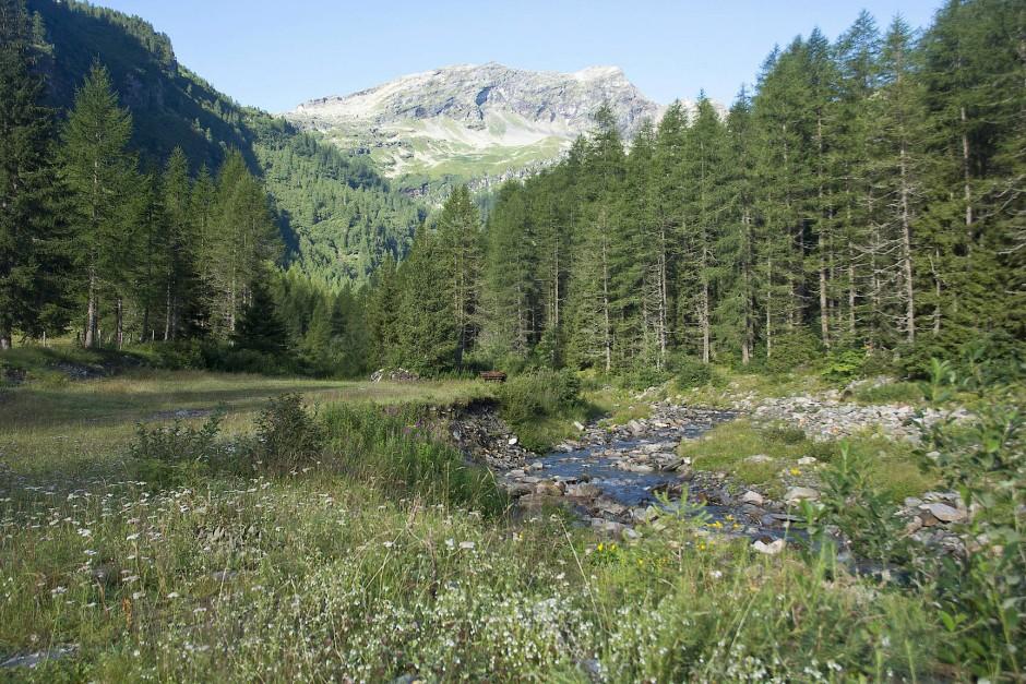 Der Parco Nazionale del Locarnese wäre erst der zweite Schweizer Nationalpark überhaupt, und er soll eine völlig andere Zielsetzung verfolgen als sein Pendant in Graubünden.