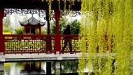 Mit 2,7 Hektar der größte seiner Art in Europa: Chinesischer Garten in den Gärten der Welt in Berlin
