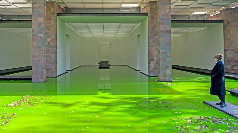 """Grün, grün, grün sind alle meine Teiche: Olafur Eliassons """"Kunstwerk """"Life"""" in der Fondation Beyeler in Basel."""