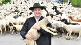 Seid umschlungen, Mond und Schafe