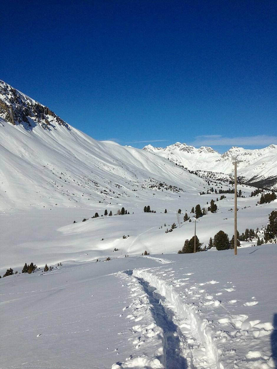 Um die großartige Alpenflora und -fauna kennenzulernen oder Skitouren und Schneeschuhwanderungen zu unternehmen, bildet das Fuorn den idealen Ausgangspunkt.
