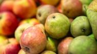 Von vorschnellen Vergleichen wird abgeraten: Äpfel und Birnen