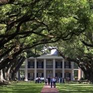 Die Oak Alley Plantage in Louisiana ist ein beliebter Ort für Hochzeiten.