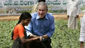 Das Wagnis des George W. Bush