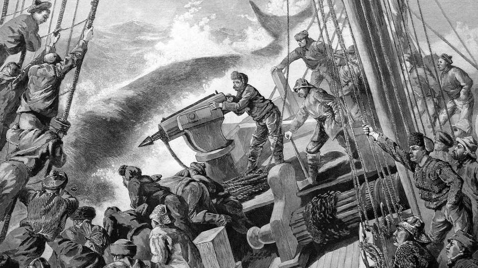 Was hat der Gegenwartsmensch mit einem Walfänger gemeinsam? Eine Vorliebe für Sea Shanties mal mindestens.