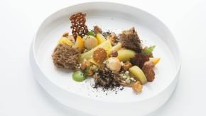 Nils Henkel - Der Sterne-Koch vom Bergisch-Gladbacher Schlosshotel Lerbach kocht für die 25. F.A.Z.-Gourmetvision ein Menu für die Leser der Frankfurter Allgemeinen Zeitung.