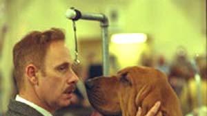 Von Hunden und von Menschen
