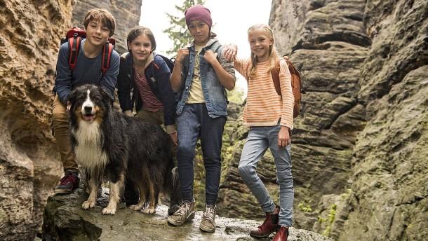 Fünf Freunde plus