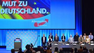 So radikal will die AfD Deutschland umbauen