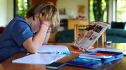 Welche Standards brauchen wir fürs Homeschooling?