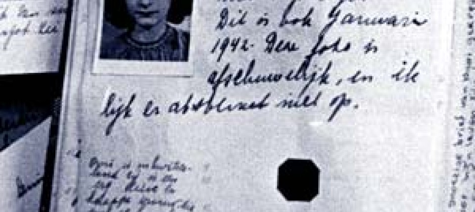 Bka Stellt Klar Anne Franks Tagebuch Ist Authentisch Bücher Faz