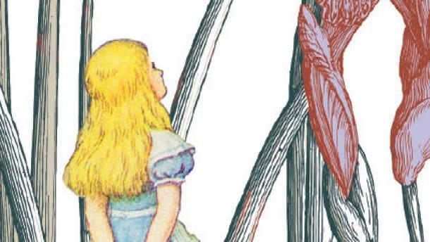 Cover Alice Insel