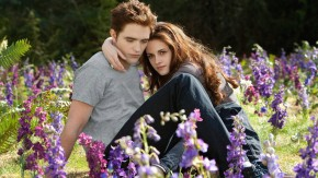 "Kinostarts - ""Twilight: Breaking Dawn (Teil 2)"""