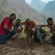 Männer an der Grabstätte ihrer Hoffnungen: Isiah Whitlock Jr., Norm Lewis, Clarke Peters, Delroy Lindo und Jonathan Majors (von links) haben in den Bergen von Vietnam das Ziel ihrer gefährlichen Suche erreicht.