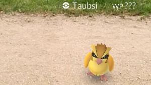 Jagt Eure Pokémon doch bitte woanders