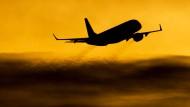 Einunddreißig Flugbegleiter
