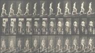 "Eadweard Muybridge, Bewegungsstudien ""Females (Nude)"" aus ""Animal Locomotion. An Electro-Photographic Investigation of Consecutive Phases of Animal Movements"", Abzug um 1887."