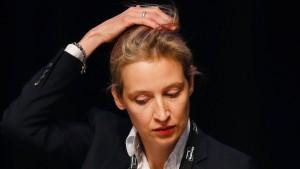 NDR lässt AfD-Politikerin Weidel abblitzen