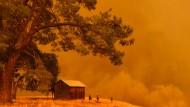 Apokalyptisch: Feuerwehrmänner müssen tatenlos mitansehen, wie Waldbrände in der Bergregion von Guinda, Kalifornien die Landschaft vernichten.