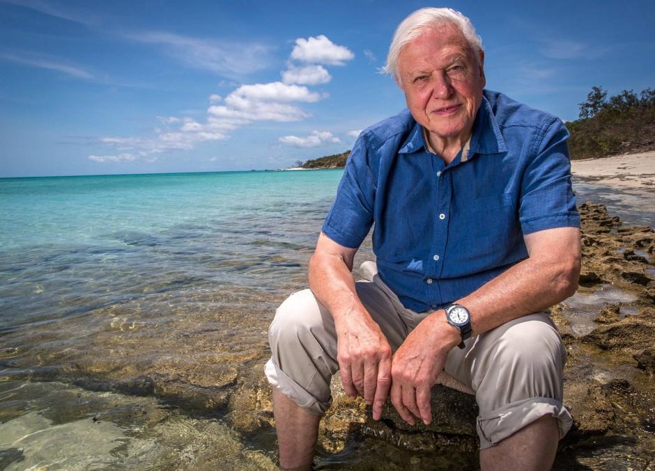 Mit Urlaub hatten seine Touren nichts zu tun, auch wenn es auf diesem Bild so aussieht: David Attenborough am Great Barrier Reef, Australien.