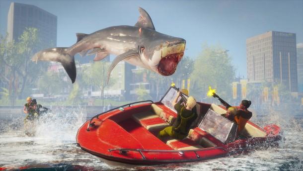 Schön Hai sein