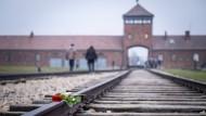 Besucher der Gedenkstätte Konzentrationslager Auschwitz im November des vergangenen Jahres.