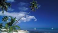 Schneller, als der Gerichtsbeschluss greift: Der illegale Streaming-Anbieter allostreaming.com ist bereits nach Belize umgezogen