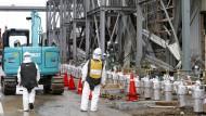 Japan streitet um Einfuhrverbote für Lebensmittel