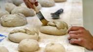 Deutschland sucht den besten Jungbäcker