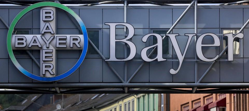 Bayer Aktienkurs Bricht Ein Was Anleger Jetzt Tun Sollten
