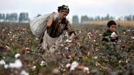Baumwollernte in Kirgistan.