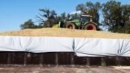 Wie KTG Agrar die Anleger schwindelig rechnete