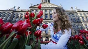 Das Ende des Tulpenwahns