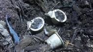 Ergebnis des FAS-Tests: Kompostierbare Espressokapseln nach zwei Wochen in der Kompostieranlage
