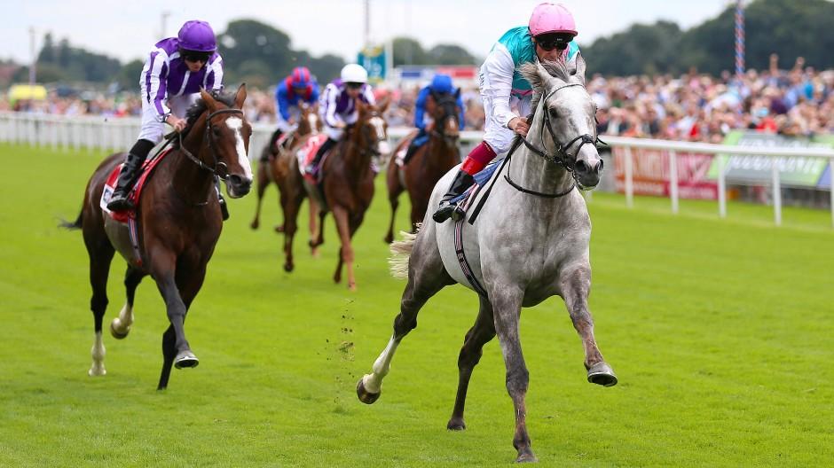 """""""Logician"""" mit Jockey Frankie Dettori - hier bei seinem Sieg in York im August - war wohl auch in Doncaster logischer Sieger der St. Leger Stakes."""