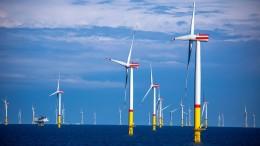 Fondsverband will Privatanleger für Nachhaltigkeit gewinnen