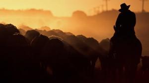 Minen-Millardärin wird Viehzüchterin