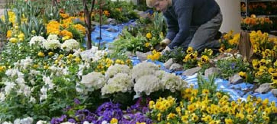Frühlingszeit Ist Gartenzeit