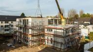 Mit Modulbauten gegen Wohnungsnot